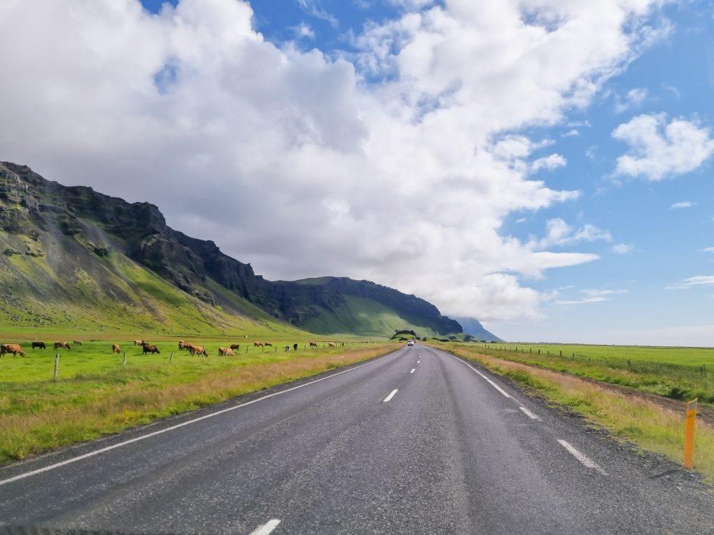 Lucruri pe care trebuie sa le stii inainte sa mergi in Islanda